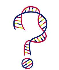 DNA – What, when, how, why – FAQs for beginners – Donna Rutherford
